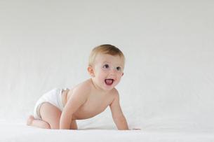 ハイハイする外国人の赤ちゃんの写真素材 [FYI02687197]