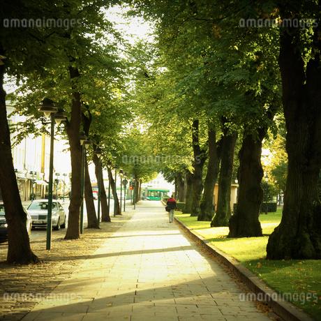 エスプラナーディ通り フィンランドの写真素材 [FYI02687592]