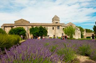 サン・ポール・ド・モーゾール修道院 サン・レミ・ド・プロヴァンス フランスの写真素材 [FYI02688219]
