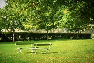 公園の写真素材 [FYI02688647]