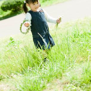 シロツメクサの花を持つ女の子の写真素材 [FYI02688834]