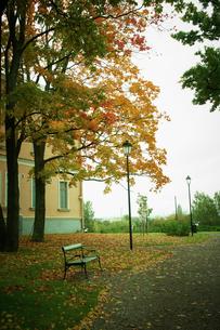 通りのベンチと紅葉の街路樹の写真素材 [FYI02688835]