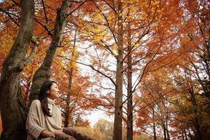 紅葉する木々と女性の写真素材 [FYI02688911]