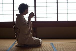 茶道を嗜む50代女性の写真素材 [FYI02688927]