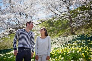 桜咲く公園に立つ外国人カップルの写真素材 [FYI02689090]
