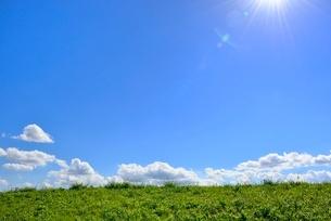 緑の土手と白雲に太陽光の写真素材 [FYI02689182]