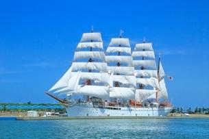 海王丸の総帆展帆の写真素材 [FYI02689290]