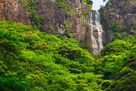 行縢の滝の写真素材 [FYI02689296]