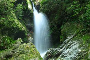虹の滝(雌滝)の写真素材 [FYI02689433]