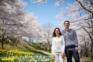 桜咲く公園に立つ外国人カップルの写真素材 [FYI02689663]