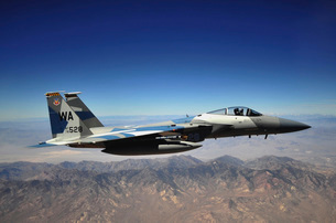 An F-15E Strike Eagle from the 65th Aggressor Squadron.の写真素材 [FYI02690167]