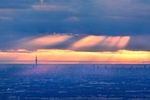東京遠望 スカイツリーとビル群に朝の光芒の写真素材 [FYI02690334]