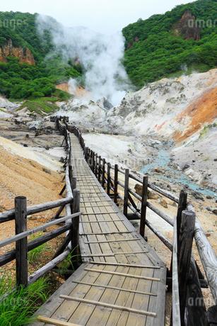 登別温泉の地獄谷と遊歩道の写真素材 [FYI02690526]