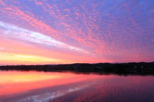 朝焼けの木場潟の写真素材 [FYI02691102]