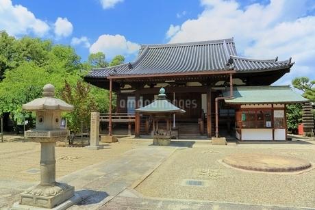 大坂夏の陣 道明寺の写真素材 [FYI02691501]