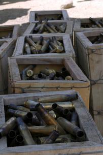 Spent .50-caliber machine gun shell casings sit inside woodeの写真素材 [FYI02691548]