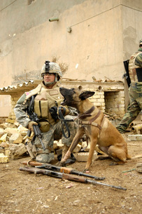 A dog handler and his military working dog take a short breaの写真素材 [FYI02691843]