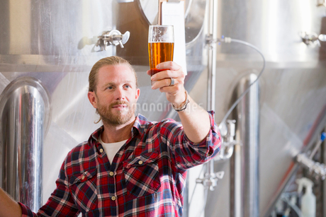 Male Brewery Worker Quality Checking Beer Sampleの写真素材 [FYI02692295]