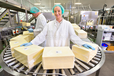 Portrait confident worker handling large blocks of cheese at production line in processing plantの写真素材 [FYI02692375]