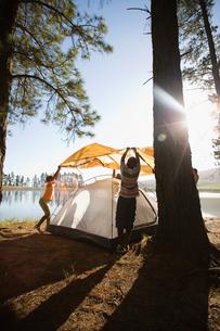 Family assembling orange tent on lakeside camping trip (lens flare)の写真素材 [FYI02692399]