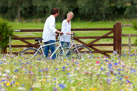 Couple with bicycles walking in wildflower fieldの写真素材 [FYI02692487]