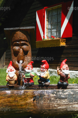 View of miniature garden gnomes lined up on a log, Maltatal, Kaernten, Austriaの写真素材 [FYI02692553]