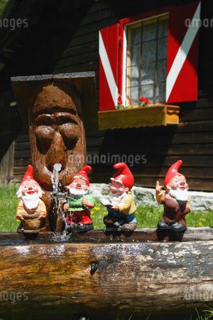 View of miniature garden gnomes lined up on a log, Maltatal, Kaernten, Austriaの写真素材 [FYI02692553]