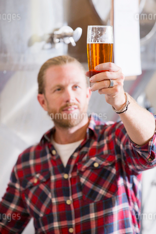 Male Brewery Worker Quality Checking Beer Sampleの写真素材 [FYI02692675]