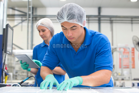 Technician worker arranging solar cells to form solar panel on production lineの写真素材 [FYI02692811]