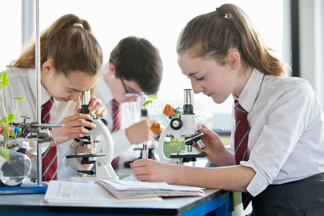 High school students conducting scientific experiment at microscopes in biology classの写真素材 [FYI02692875]