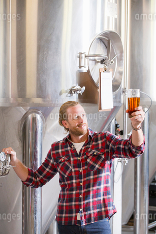 Male Brewery Worker Quality Checking Beer Sampleの写真素材 [FYI02692877]