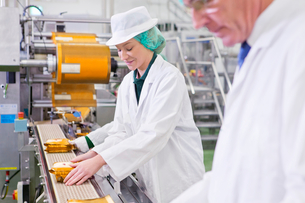 Workers stacking cheese on production line in processing plantの写真素材 [FYI02692878]