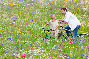 Father and son riding bicycles in wildflower fieldの写真素材 [FYI02692925]