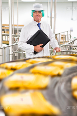 Portrait confident bank manager at production line in cheese processing plantの写真素材 [FYI02693070]
