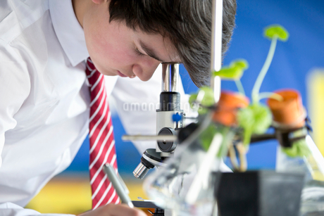 Close up high school student conducting scientific experiment at microscope in biology classの写真素材 [FYI02693168]