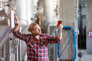 Male Brewery Worker Quality Checking Beer Sampleの写真素材 [FYI02693230]