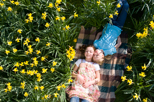 Two young girls laying in field of daffodilsの写真素材 [FYI02693235]