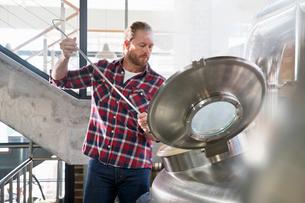 Male Brewery Worker Checking Fermentation Process In Steel Vatの写真素材 [FYI02693469]