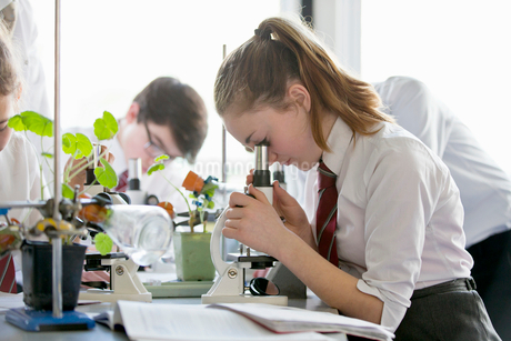 High school student conducting scientific experiment at microscope in biology classの写真素材 [FYI02693474]