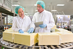 Quality control workers with digital tablet examining blocks of cheese at production line in processの写真素材 [FYI02693639]