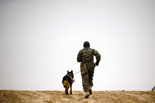 A dog handler and his military working dog take a brisk walkの写真素材 [FYI02693950]