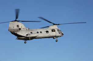 A U.S. Marine Corps CH-53 Sea Stallion helicopter.の写真素材 [FYI02694206]