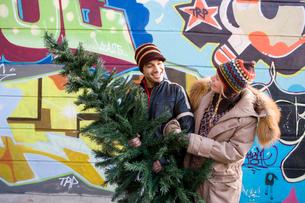 Couple buying Christmas treeの写真素材 [FYI02694408]