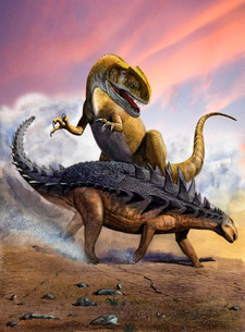 Confronation between a Neovenator and a Polacanthus armored dinosaur.のイラスト素材 [FYI02696076]