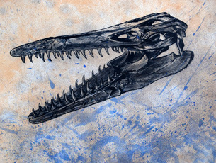 Mosasaurus dinosaur skull.のイラスト素材 [FYI02696611]