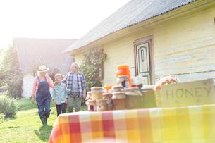 Grandparents and grandson walking toward rural honey standの写真素材 [FYI02697022]