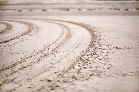Tracks forming in sand on beachの写真素材 [FYI02697067]