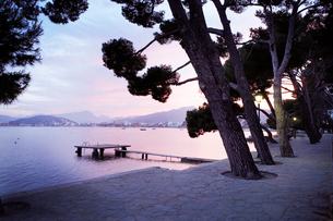 View of huge trees and empty jetty in bay with mountains in backgroundの写真素材 [FYI02697126]