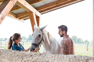 Couple petting horse in rural stableの写真素材 [FYI02697172]