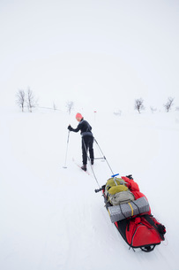 Full length rear view of woman pulling backpacks on sled in snowの写真素材 [FYI02697440]